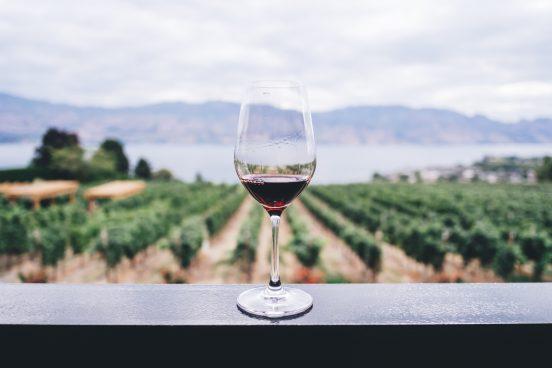 Jysk Vin - Skøn kvalitet, direkte fra marken